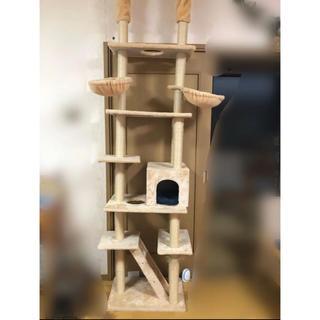 キャットタワー つっぱり型
