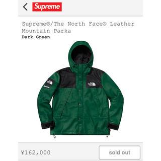 シュプリーム(Supreme)のSupreme/The North Face Leather green M(マウンテンパーカー)