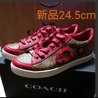 COACH - コーチ スニーカー 24.5cm シグネーチャー