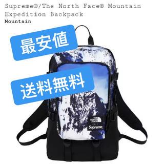 ザノースフェイス(THE NORTH FACE)のsupreme the north face tnf backpack リュック(バッグパック/リュック)