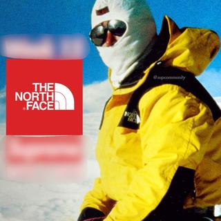 THE NORTH FACE - 2018年秋冬 ノースフェイス マウンテンダウンジャケット