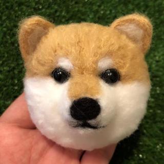 柴犬ほっこりぽんぽん
