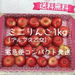 ミニりんご1kg 25 個以上入り【送料無料】