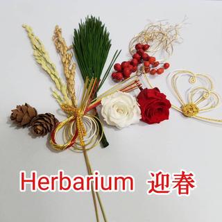 ハーバリウム花材・プリザーブド 迎春セット(プリザーブドフラワー)