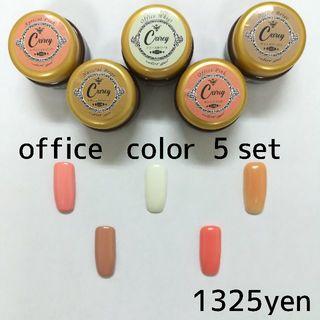◆オフィスシーンで使える色をチョイス◆ツヤツヤジェル5色セット カラージェル(カラージェル)