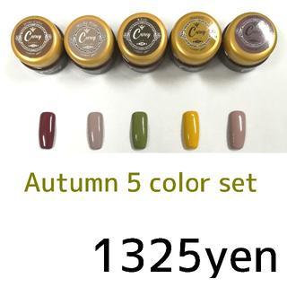 ◆秋色をチョイス◆ツヤツヤジェル5色セット カラージェル ジェルネイル(カラージェル)