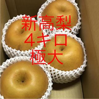 新高梨   ご家庭用   4キロ   極大‼️(フルーツ)