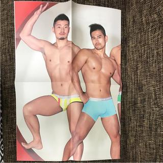 GX3 ポスター B5×8枚 サイズ