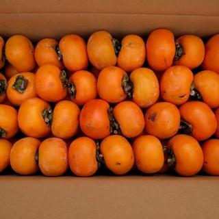 千曲農園 平核無柿(ひらたねなしがき) 約8.5kg 信州産 吊るし柿