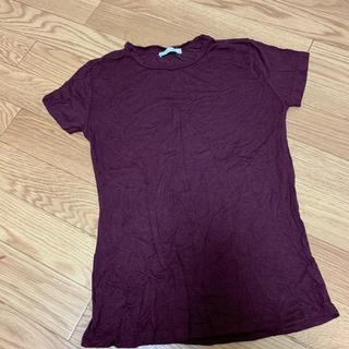 ZARA - ZARA ワインレッド Tシャツ