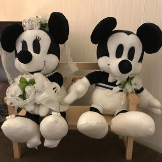 ディズニー(Disney)のウェルカムドール ミッキー ミニー(ぬいぐるみ)