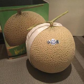 新品 箱入り静岡産 メロン(フルーツ)