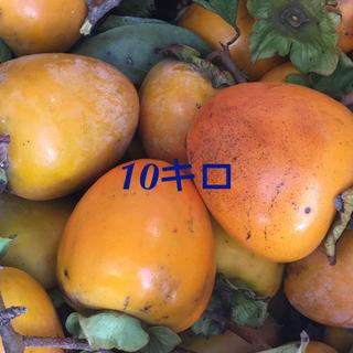 渋柿10キロ(フルーツ)