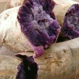 込1キロ 無農薬 紫いも