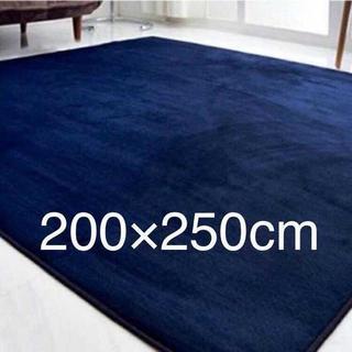 ★大きいサイズ★ふわっふわなさわり心地☆カーペット/絨毯/ラグ/ネイビー
