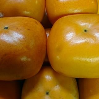 和歌山産平田種なし柿5キロ(フルーツ)