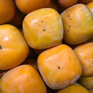 和歌山たねなし柿(フルーツ)