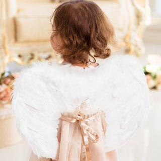 キャサリンコテージ(Catherine Cottage)の天使の羽 簡単手軽なハロウィン仮装コスチューム キャサリンコテージ 新品未使用(その他)