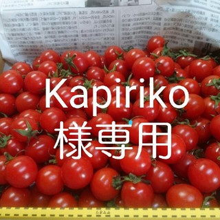 ★kapiriko様専用★ミニトマト(野菜)