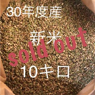 30年度産 【新米】きぬむすめ 小米 くず米 青米 【和歌山県産】(米/穀物)