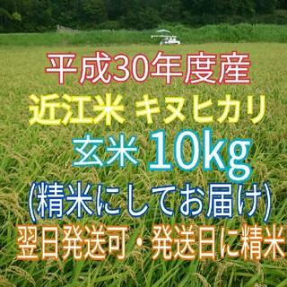 琵琶湖の恵☆H30年 新米☆近江米 キヌヒカリ☆玄米10kg(精米してお届け)