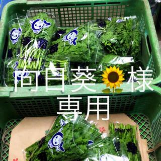向日葵様専用(野菜)