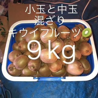 キウイフルーツ 9kg(フルーツ)