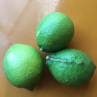 収穫量日本一!広島県産グリーンレモン 果汁用 激安3キロ750円 送料別(フルーツ)