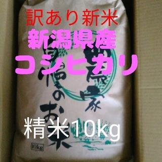 【残り1袋】新米新潟県産コシヒカリ訳あり小粒10キロ精米(米/穀物)