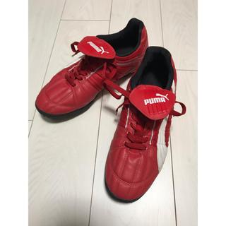 PUMA - PUMA サッカー フットサル トレーニングシューズ 27.5cm 赤白