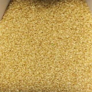 玄米1㎏(新米)真空パック詰め