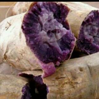 1キロ 無農薬 紫いも