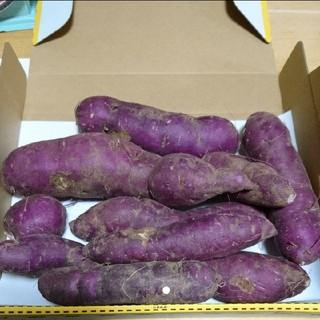 富山県産 無農薬栽培 紫芋 1.2kg