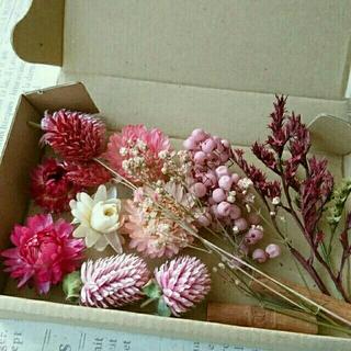 ドライフラワーの花材セット  シックピンク系8(ドライフラワー)