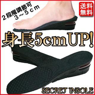 シークレットインソール 中敷き サイズ調整可 メンズ レディース 靴 身長UP!(その他)