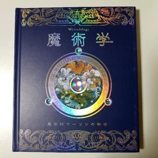 53 魔術学 魔術師マーリンの秘密 大型本