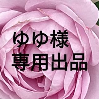 ゆゆ様専用出品(ソックス)