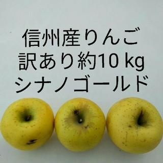 向日葵様専用 訳ありシナノゴールド 約25 kg 信州産リンゴ(フルーツ)