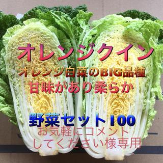 低農薬 野菜セット 100  お気軽に…様専用(野菜)
