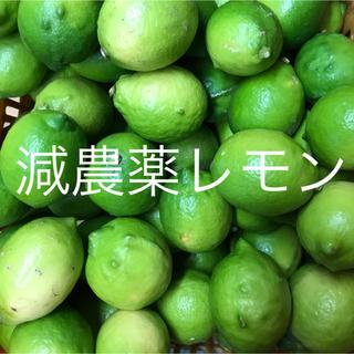 国産レモン  2.5キロ  家庭用(フルーツ)