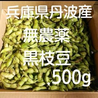 正真正銘 兵庫県丹波産  無農薬 丹波の黒豆の枝豆