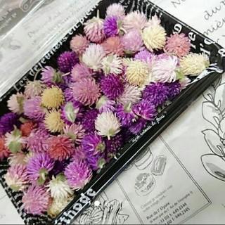 再販♥️︎ドライフラワー♡千日紅 100個 詰め合わせ 花材 ハンドメイド 花(ドライフラワー)
