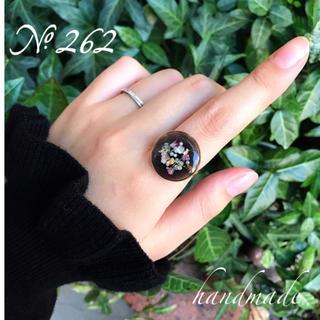 Kastane - No.262♡SALE価格