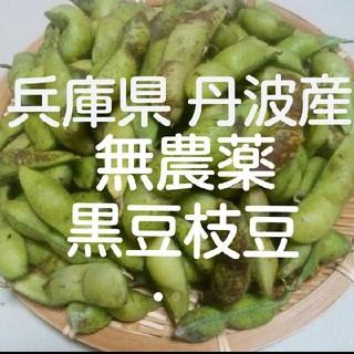 正真正銘 兵庫県丹波産  無農薬 丹波の黒枝豆