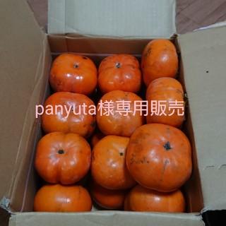 次郎柿 4.6キロ 20個入り 柿