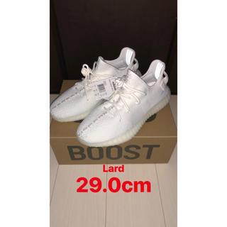 adidas - Yeezy Boost 350 V2 Cream White 29cm ホワイト