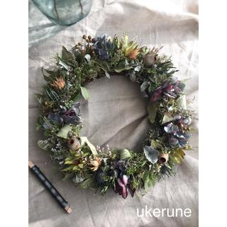 ボルドー秋色紫陽花とベルギーナッツのシックなアンティーク リース ドライフラワー(ドライフラワー)