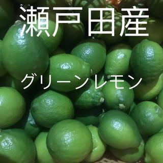 国産レモン コンパクト箱約1.5キロ(フルーツ)