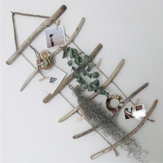 流木ラダー˚✧₊⁎クリップつきタペストリー ナチュラルインテリア ボタニカル雑貨(インテリア雑貨)