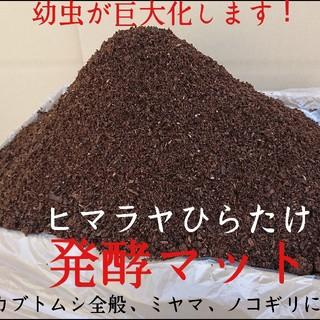 りょーた様専用 ヒマラヤひらたけ発酵カブトムシマット 80リットル 送料込み(虫類)